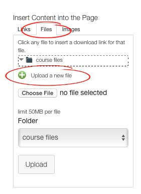 Upload Files screenshot