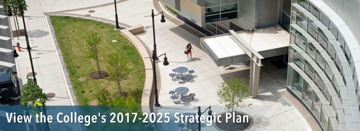 View the Strategic Plan