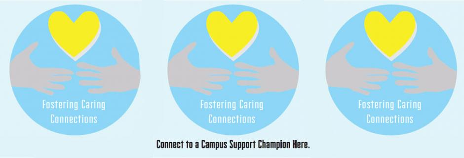 Fostering Care Connections