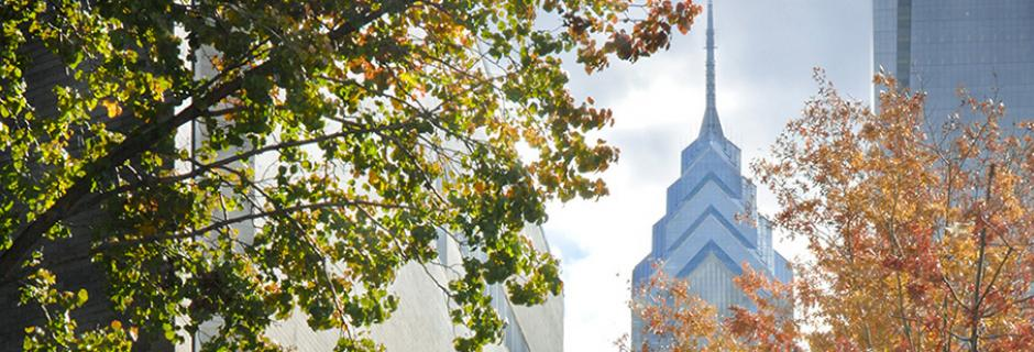 Liberty place through fall trees