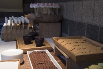 Refreshments, including s'mores, served at the Fireside Chat.